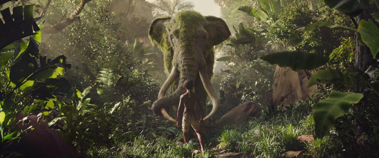 Mowgli 5.jpg