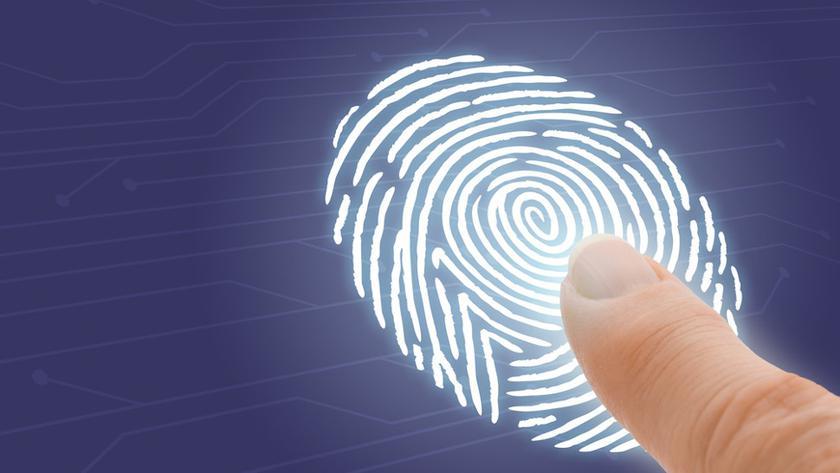 Производители выбрали наэкранные сканеры пальцев вместо сканеров лица