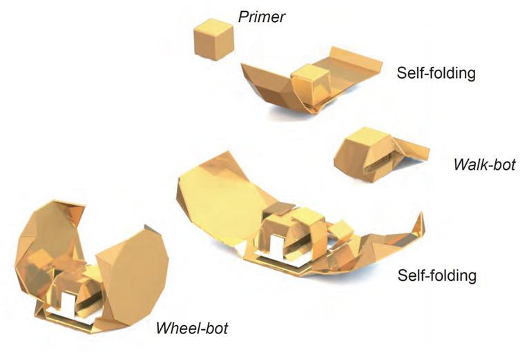 ВMIT выдумали «костюмы» для оригами-роботов
