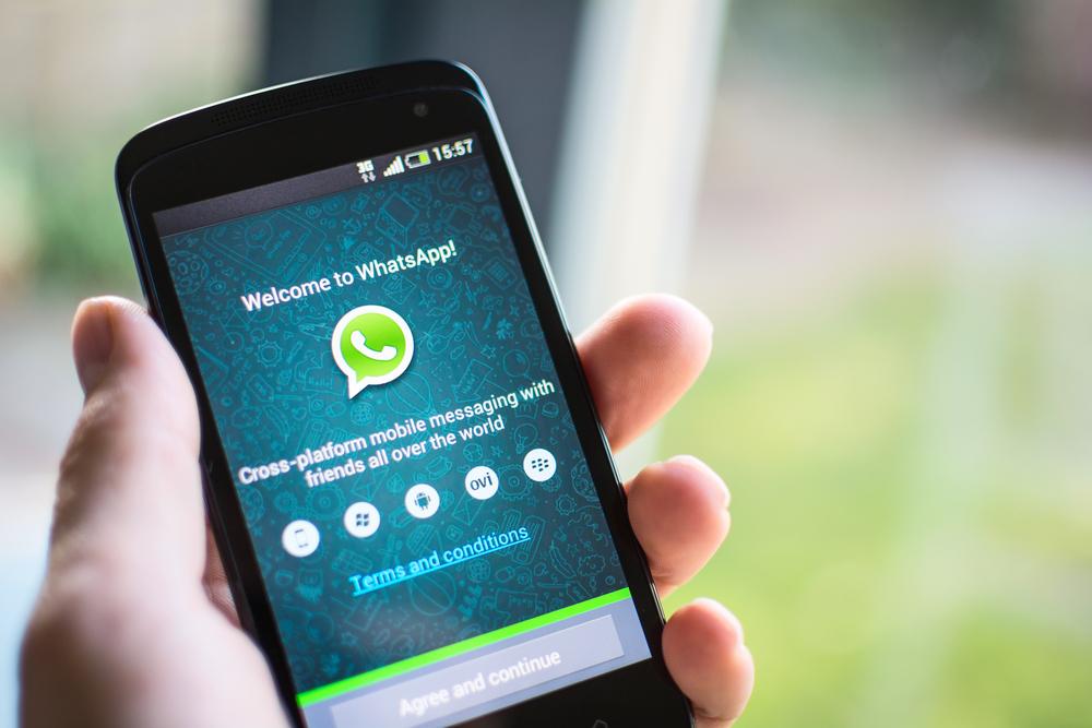 WhatsApp позволил пересылать всевозможные  файлы