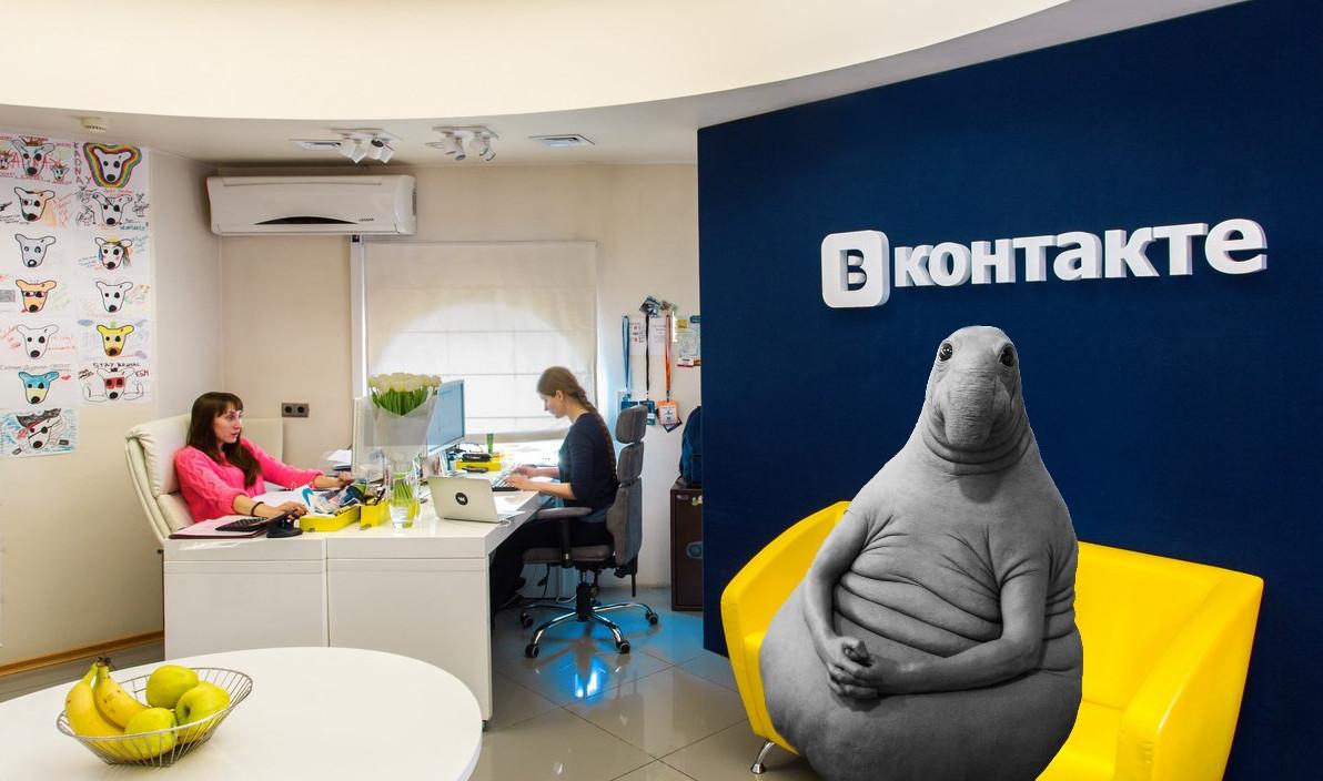 Дождались: на Vkontakte.ru подали всуд из-за Ждуна