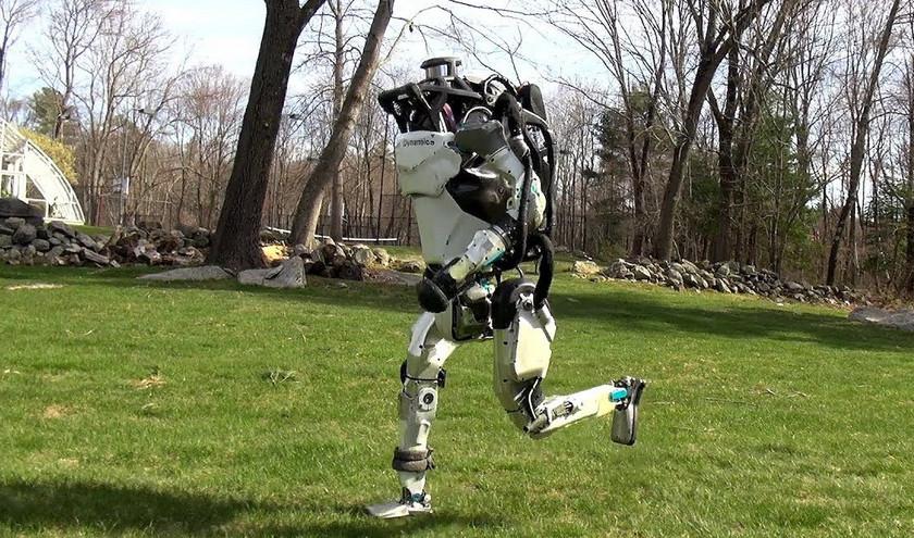 Робот-собака Boston Dynamics бродит по офису, а гуманоид Atlas вышел на пробежку (видео)