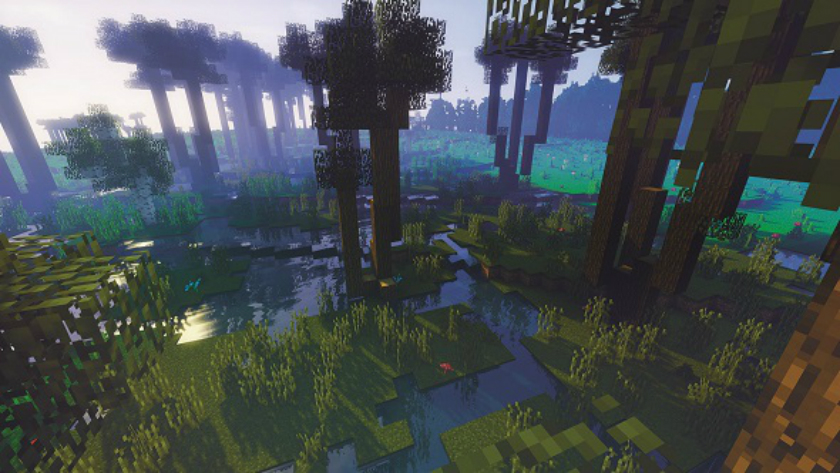 Game Minecraft helped save the forest in Poland