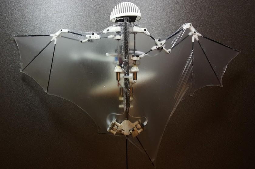 Механическое совершенство— Робот-летучая мышь