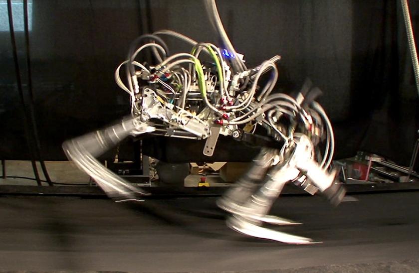 Робот чемпион – Cheetah