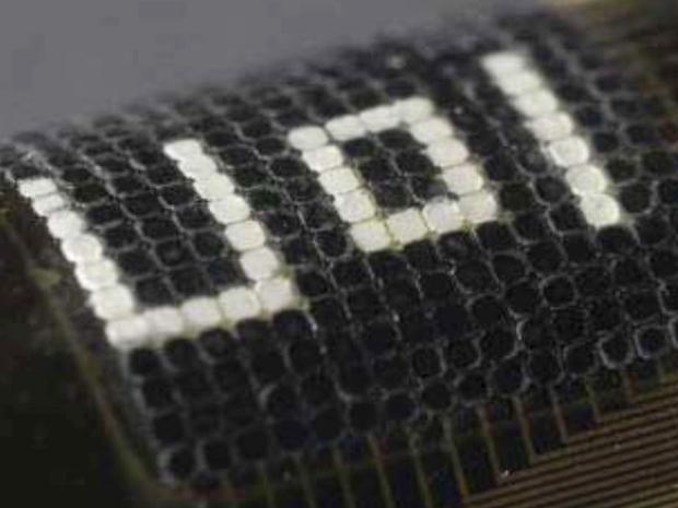 Ученые создали систему адаптивного камуфляжа на манер кожи каракатицы