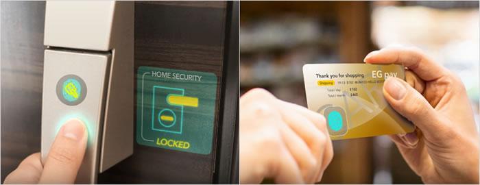 fingerprint sensor.jpg