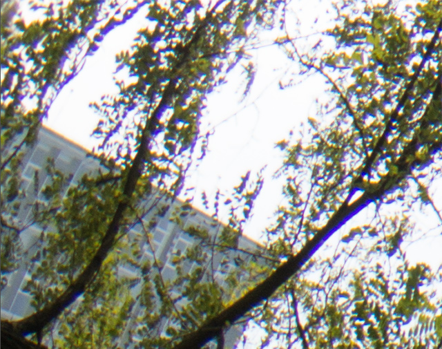 Обзор объектива Samsung NX 10mm f/3.5 (F10ANB) типа «рыбий глаз»-4