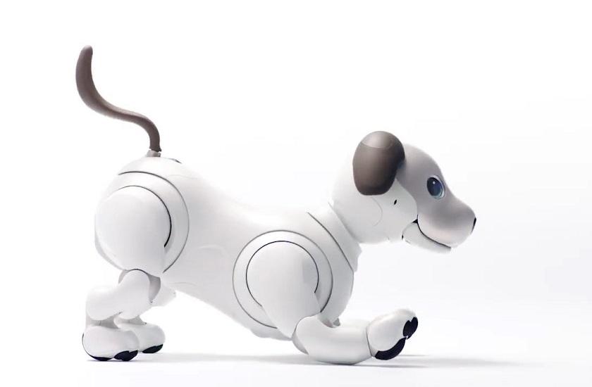 Сони представила нового робота-собаку Aibo