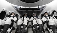 NASA и компания Илона Маска SpaceX запустили первый регулярный рейс к МКС на корабле Crew Dragon
