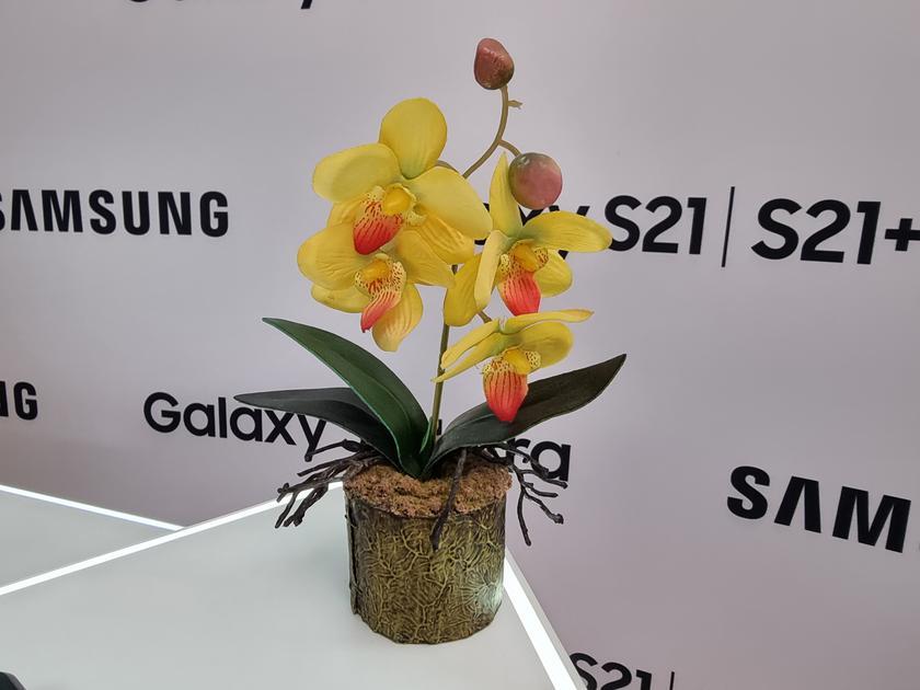 Флагманская линейка Samsung Galaxy S21 и наушники Galaxy Buds Pro своими глазами-39