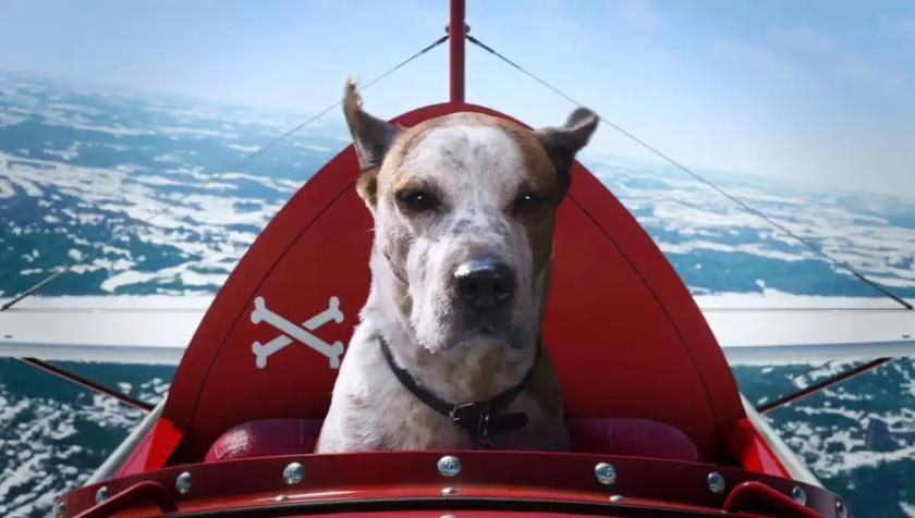 Microsoft снял рождественскую рекламу о собаках в Halo и Minecraft: получилось немного грустно и трогательно