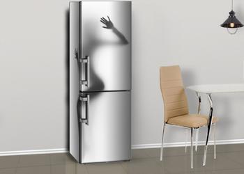 Рейтинг холодильников для жизни: как сытой, так и скромной