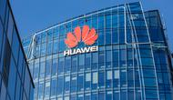 Reuters сообщила о планах Huawei продать смартфоны серии P и Mate, компания все отрицает