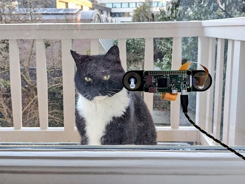 the programmer created a system for recognizing the cat s muzzle