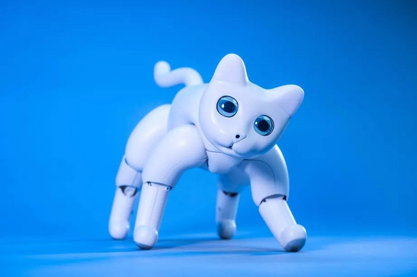 На Kickstarter запустили стартап по разработке милейшего робокота